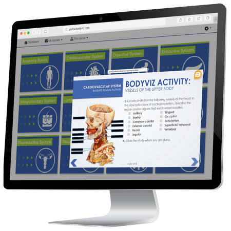 Online- Porta-header-image