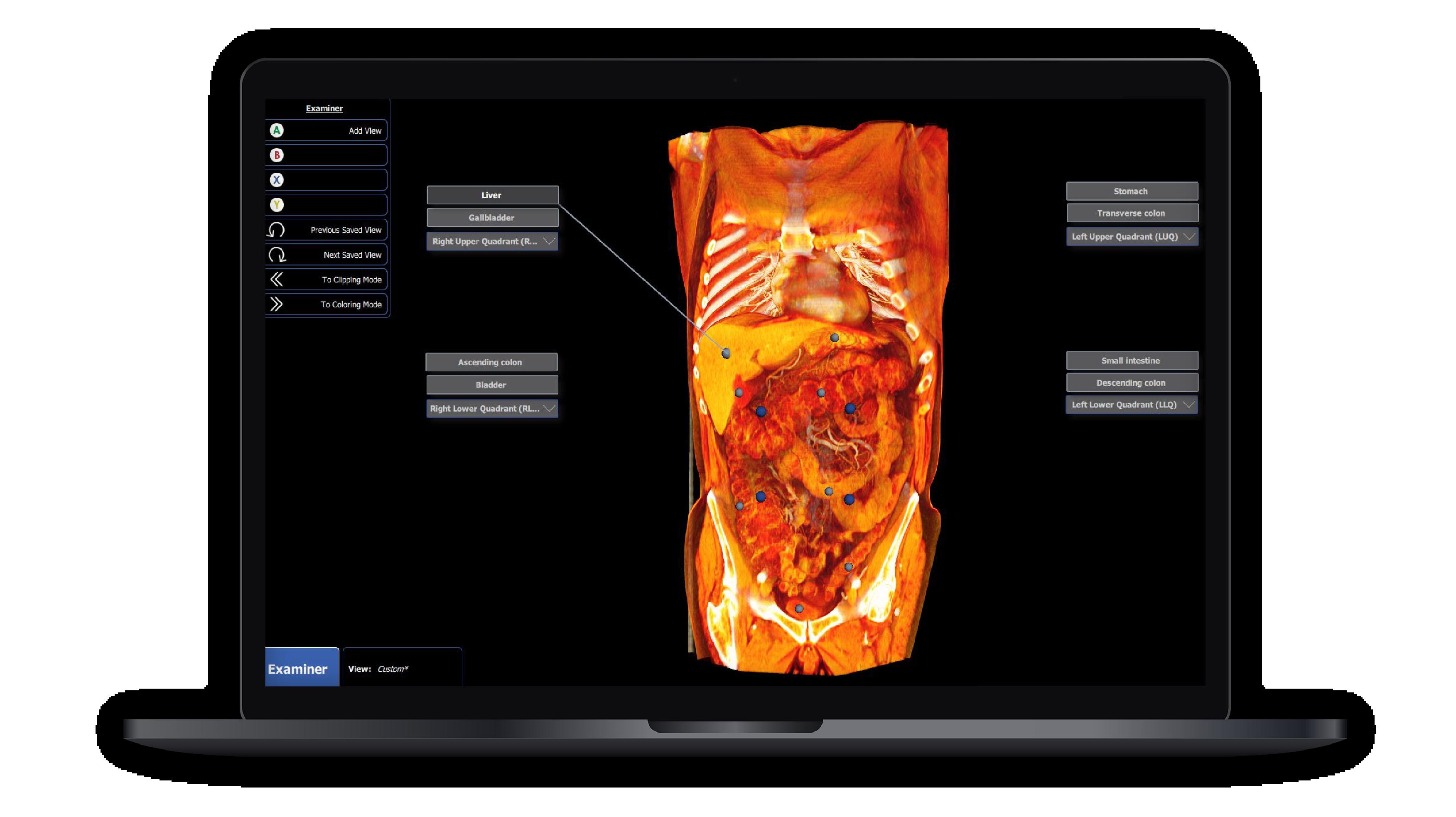 instructor-license-3d-anatomy-software-01-01